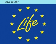 life+queeslife